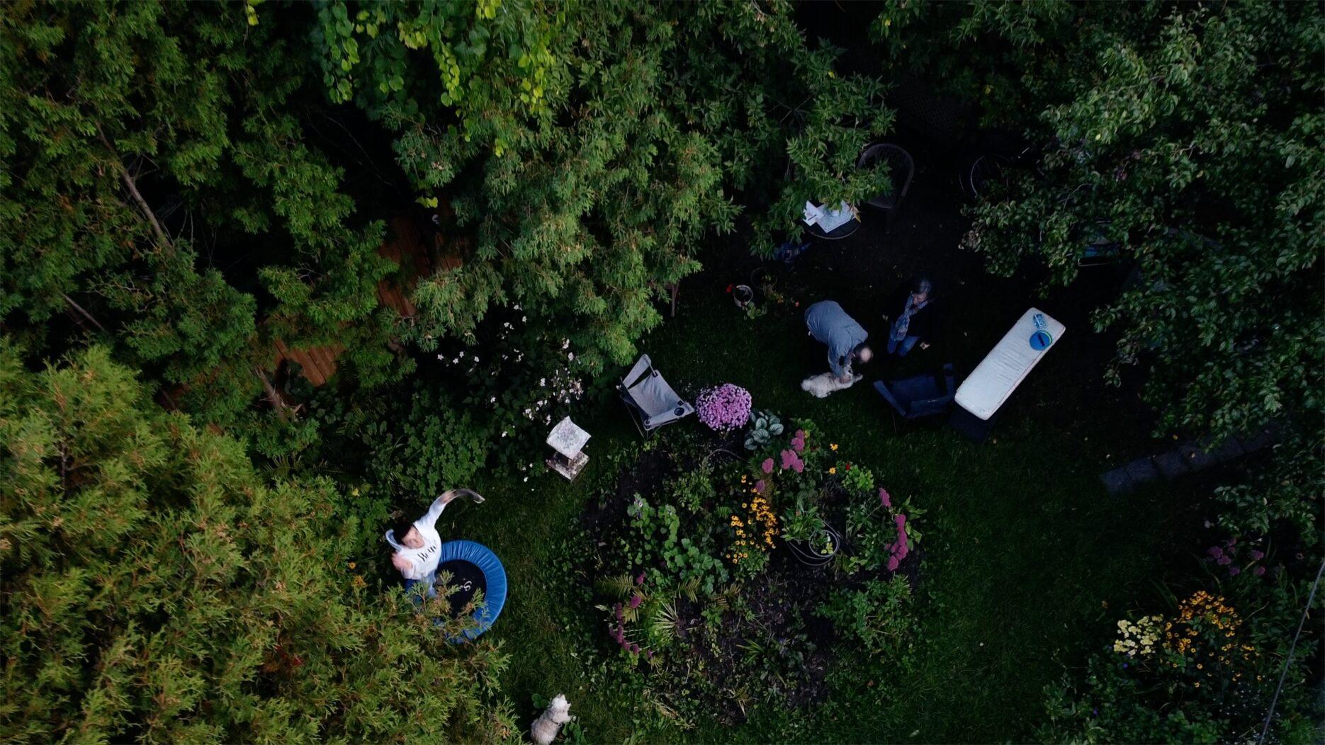Aerial shot of back yard